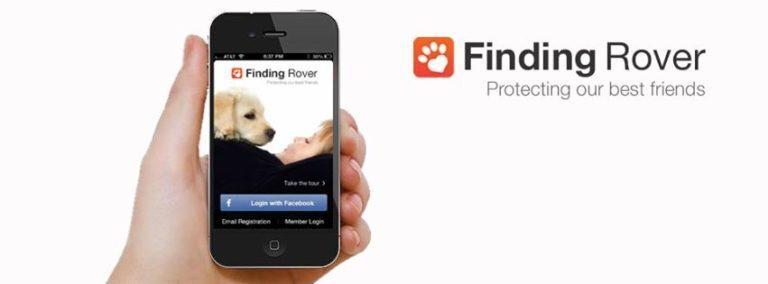 ¡Fiding rover! encuentra a tu mascota perdida