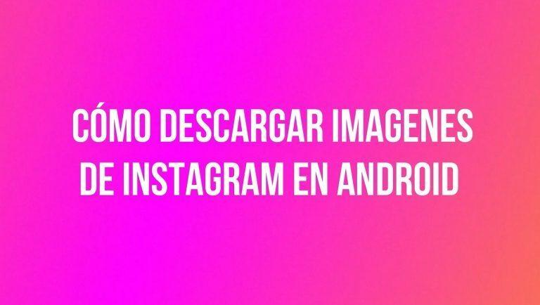 Cómo descargar imágenes de Instagram desde Android y PC
